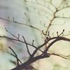 sandglass userpic