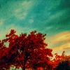 kickflip userpic