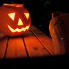 sweetpea__ userpic